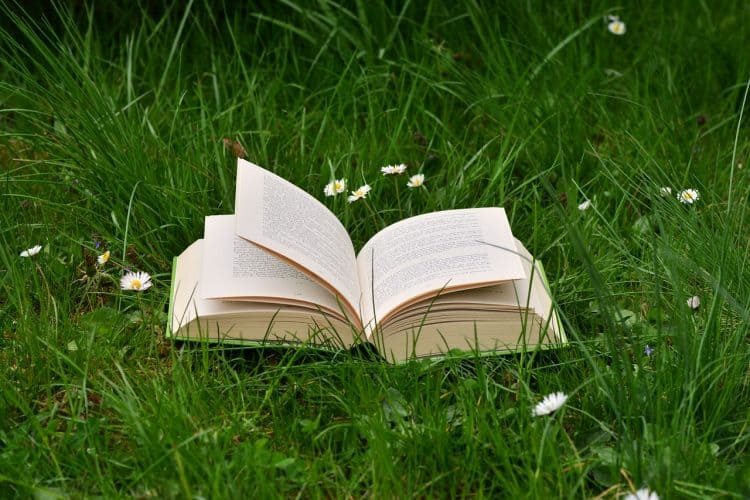 A book on grass symbolising edtech to read a book faster