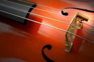 zoom side cello